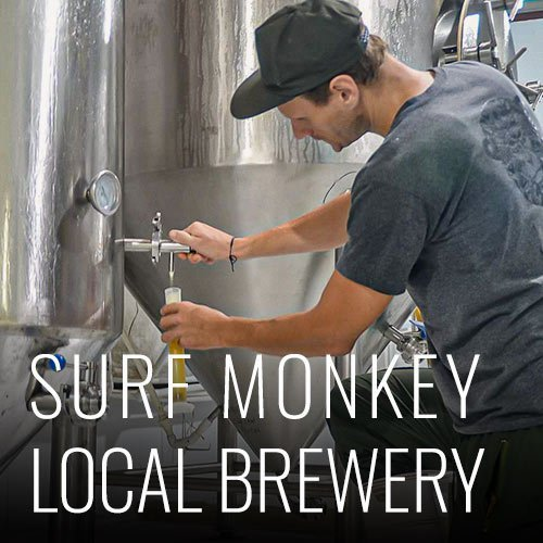 Surf Monkey offers us the best craft beer in the area, its factory just 20 minutes away by motorcycle from the hostel. You can organize guided tours so you can see how this exquisite drink is made. You can book the tour at the reception of the hostel. * Tour subject to factory availability.