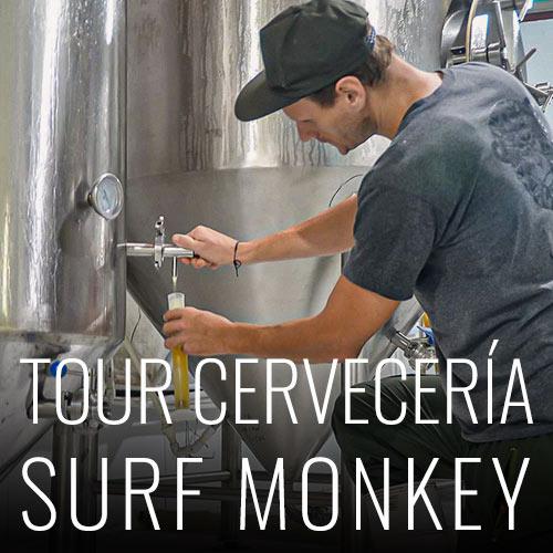 Surf Monkey nos ofrece la mejor cerveza artesanal de la zona, su fabrica a tan solo 20 minutos en moto desde el hostal, ofrece tours guiados para que puedas ver como se fabrica esta exquisita bebida. Puedes reservar el tour en la recepción del hostal. *Tour sujeto a la disponibilidad de la fabrica